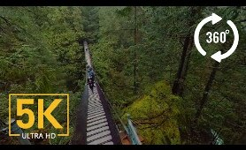 Virtual Nature Relaxation - VR 360° 5K Video - Creek Canyon Trail, BC, Canada
