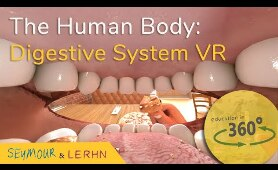 Human Digestive System in VR!!! | Education in 360