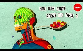 How sugar effects the brain